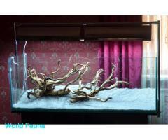 Грунт для акваріума світлий