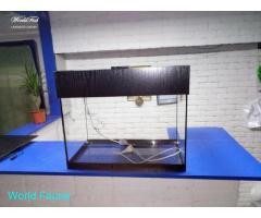 аквариум 26л с крышкой